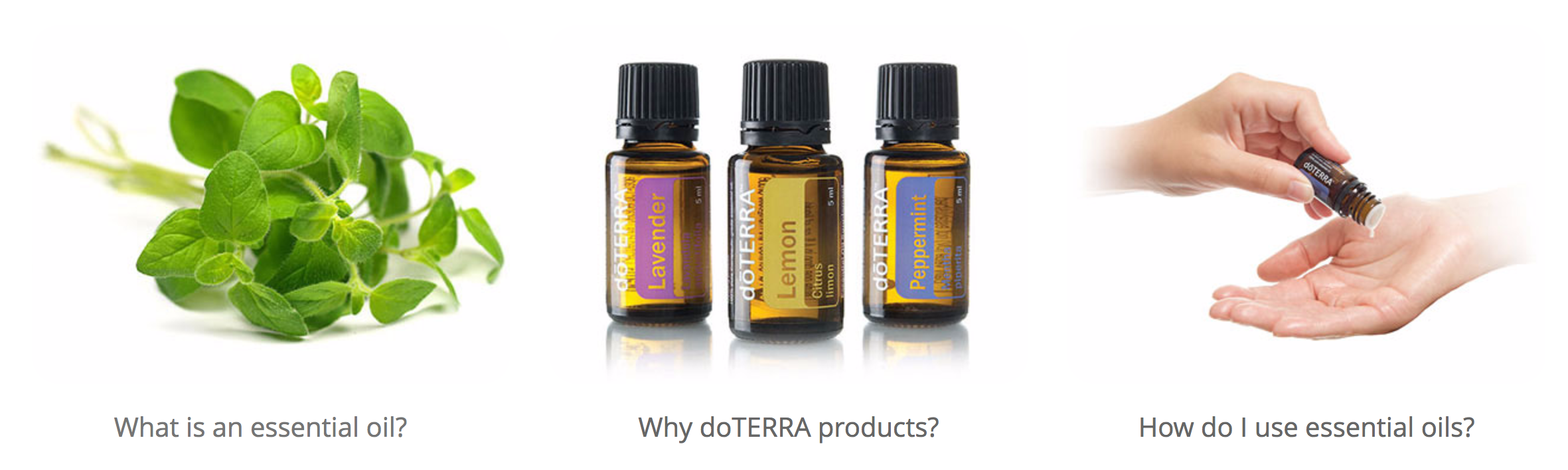 Best Quality Essential Oils